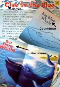 Blue Whale Poems