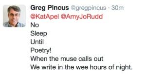 Greg Pincus - No Sleep